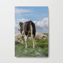O, what a nice ass you have dear little cow Metal Print