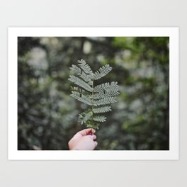 Rainforest Details Art Print