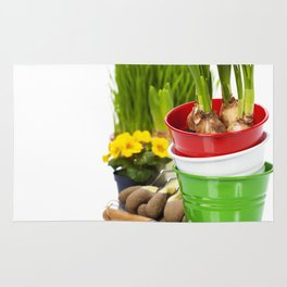 Spring flowers and garden tools  isolated on white Rug