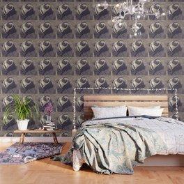 Adorable African Penguin Series 3 of 4 Wallpaper