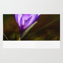 Bright Purple Spring Crocus Rug