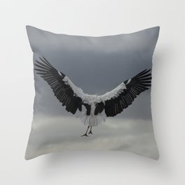 Spread your wings and land Throw Pillow