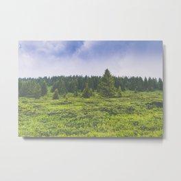 Infinite forest landscape Metal Print
