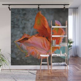 Parrot Tulip by Teresa Thompson Wall Mural