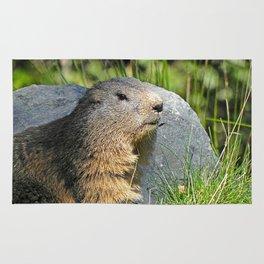 Groundhog Rug