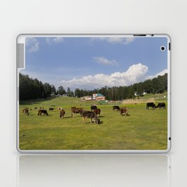 mini switzerland in india Laptop & iPad Skin