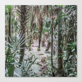 Palm Trees in the Green Swamp Canvas Print
