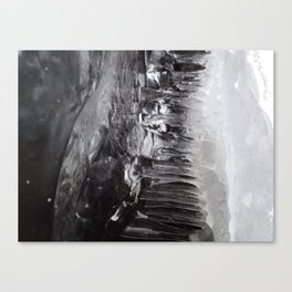 Dripping Canvas Print