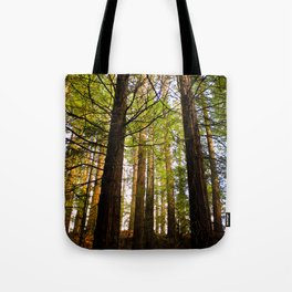 Within The Redwoods Tote Bag