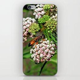 Wasp 1758 iPhone Skin