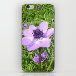 One Delicate Pale Lilac Anemone Coronaria Wild Flower iPhone Skin