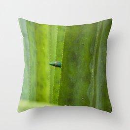 Peekaboo! A gecko in the agave Throw Pillow