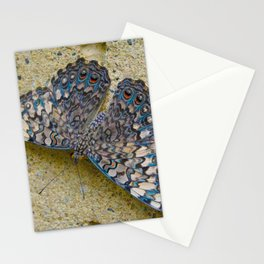 Turquoise and Sand Butterfly by Teresa Thompson Stationery Cards