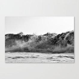 PE // 0060 Canvas Print