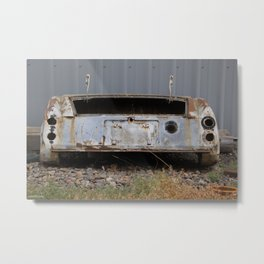 Halvsies Metal Print