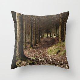 Path through forest near Blea Tarn. Cumbria, UK. Throw Pillow