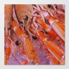 Gourmet Shrimp Canvas Print