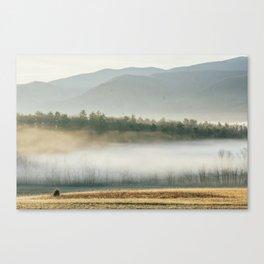 smokies Canvas Print