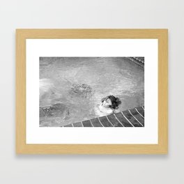 Dauphin Framed Art Print