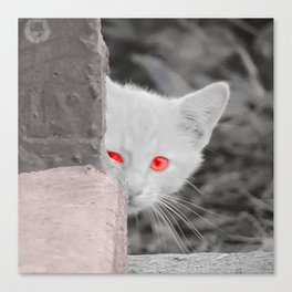 Kitty in the City Canvas Print