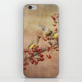 Cedar Waxwings Gathering iPhone Skin