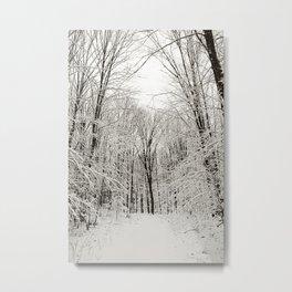 Snow Trail Metal Print