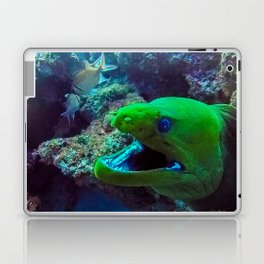 Moray Eel Laptop & iPad Skin