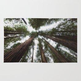 Redwood Portal - nature photography Rug
