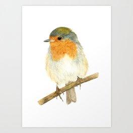 Watercolour Painting Robin Art Print
