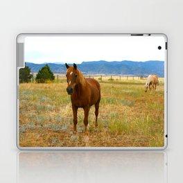 Horsies  Laptop & iPad Skin