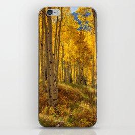 Autumn Aspen Forest Aspen Colorado iPhone Skin