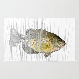 Black Crappie Fish Rug