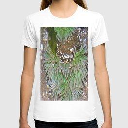 Tide pools T-shirt