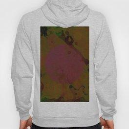 Abstract 45 Hoody