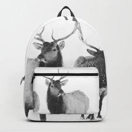 Winter Elk Photograph Backpack