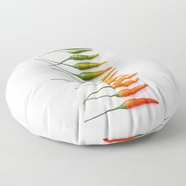 Hot Pepper Gradient Floor Pillow