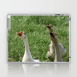 Three Little Peckerheads Laptop & iPad Skin