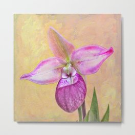 """Cardinale"" Slipper Orchid Metal Print"