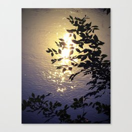 Holding the Sunshine Canvas Print