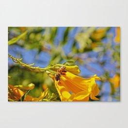 bee wild Canvas Print