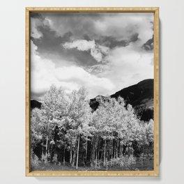 Aspens in Colorado Black & White Serving Tray