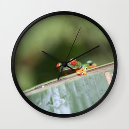 Red eye Frog on leaf Costa Rica Photography Wall Clock
