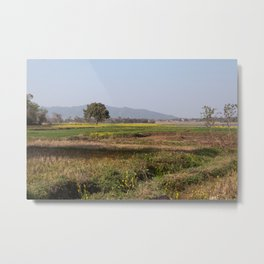 Jharkhand Farms Metal Print
