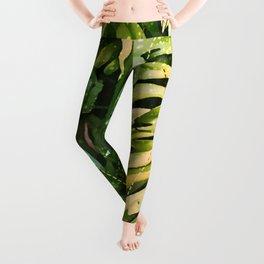 Leaf & gold Leggings