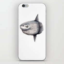 Ocean Sunfish (Mola mola) iPhone Skin