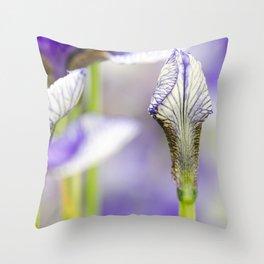 Flight of Butterflies Iris Throw Pillow
