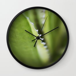 Striped Agave Macro Wall Clock