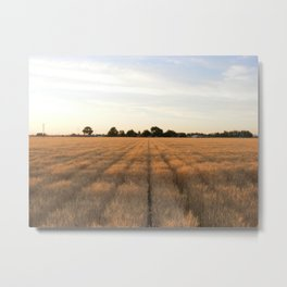 Rows Metal Print
