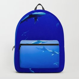 Sharks! Backpack