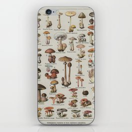 Vintage French Mushroom Identification Chart iPhone Skin